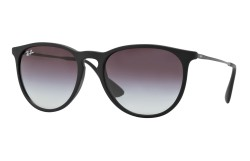 Ray-Ban ® Erika Classic RB4171-622/8G